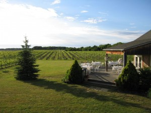 Paumanok Vineyards Deck