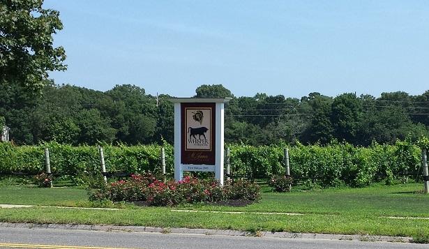 Whipser Vineyards vines