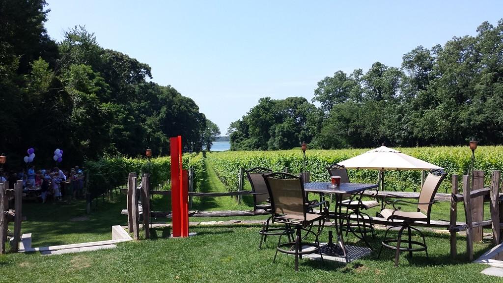 Harmony Vineyards waterview